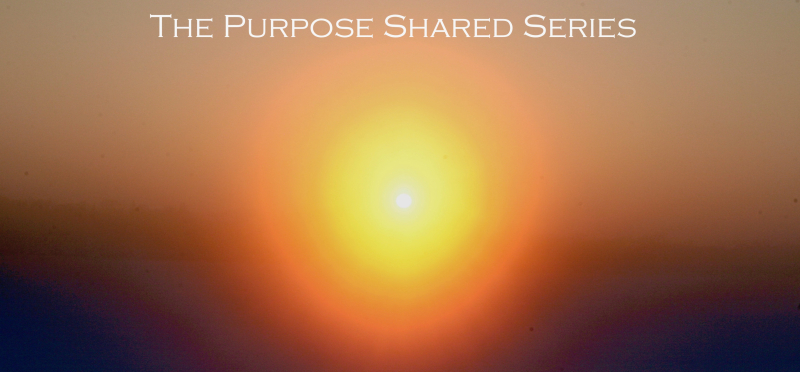 The Purpose Shared Series